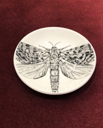 Petite coupelle papillon Stéphanie Cahorel