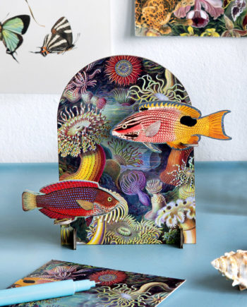pop up card poisson studio roof