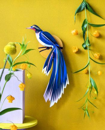 oiseau flores studio roof
