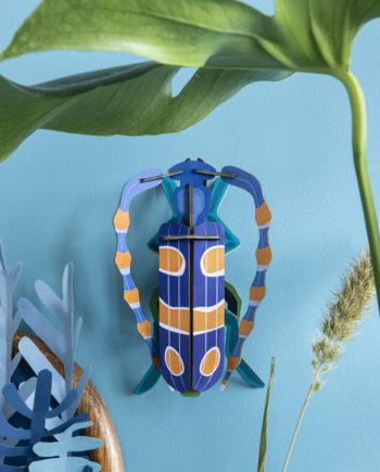 scarabée à cornes studio roof
