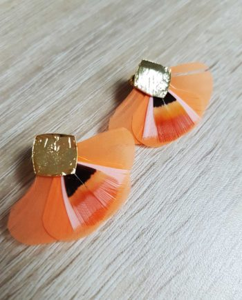 joyce abricot
